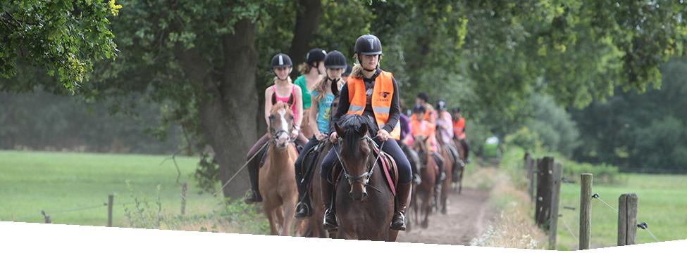 Paardrijden - Buitenrit op Klein Oever