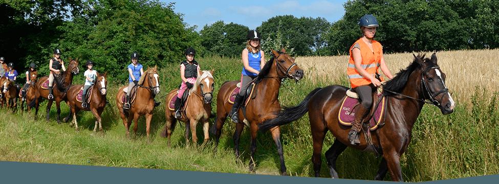 ponykamp op Klein Oever